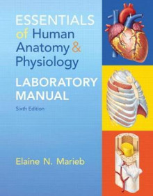 Essentials of Human Anatomy & Physiology Laboratory Manual av Elaine N. Marieb (Spiral)