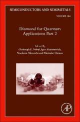 Omslag - Diamond for Quantum Applications Part 2: Volume 104
