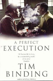 A Perfect Execution av Tim Binding (Heftet)