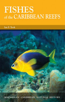 Fishes of the Caribbean Reefs av Ian F. Took (Heftet)