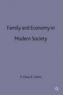 Family and Economy in Modern Society (Innbundet)