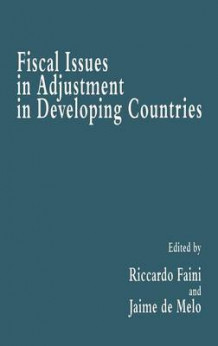 Fiscal Issues in Adjustment in Developing Countries (Innbundet)