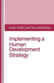 Implementing a Human Development Strategy av Keith Griffin og Terry McKinley (Heftet)