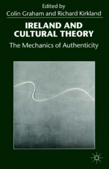 Ireland and Cultural Theory (Heftet)