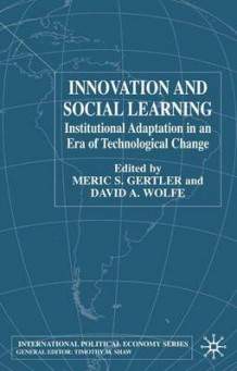 Innovation and Social Learning 2002 (Innbundet)