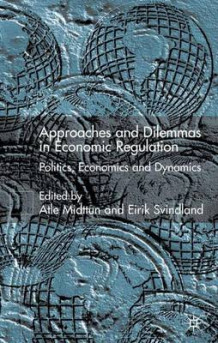 Approaches and Dilemmas in Economic Regulation (Innbundet)