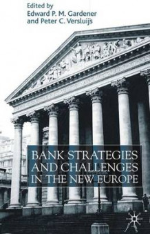 Bank Strategies and Challenges in the New Europe (Innbundet)