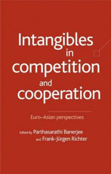 Intangibles in Competition and Cooperation (Innbundet)