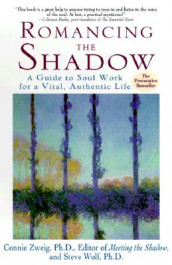 Romancing the Shadow av Steven Wolf og Connie Zweig (Heftet)