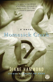 Homesick Creek av Diane Hammond (Heftet)