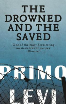 The Drowned and the Saved av Primo Levi (Heftet)