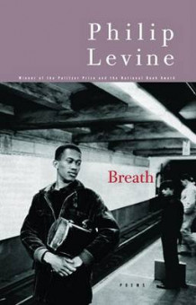 Breath av Judge Philip Levine (Heftet)