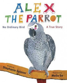 Alex the Parrot: No Ordinary Bird av Stephanie Spinner (Innbundet)
