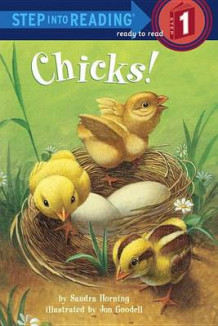 Chicks! av Sandra Horning (Innbundet)