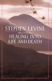 Healing into Life and Death av Levine (Heftet)