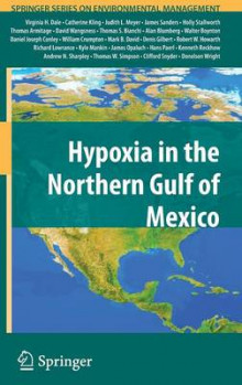 Hypoxia in the Northern Gulf of Mexico av Virginia H. Dale, Professor Catherine L. Kling, Judith L. Meyer, James Sanders, Holly Stallworth, Thomas Armitage, David Wangsness, Thomas S. Bianchi, Alan Blumberg og Walter Boynton (Innbundet)