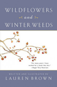 Wild Flowers and Winter Weeds av Lauren Brown (Heftet)