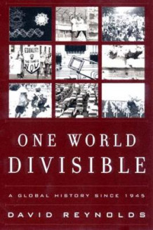One World Divisible av David Reynolds (Heftet)