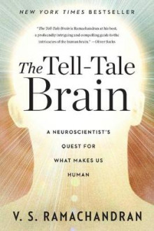 The Tell-Tale Brain av V. S. Ramachandran (Heftet)