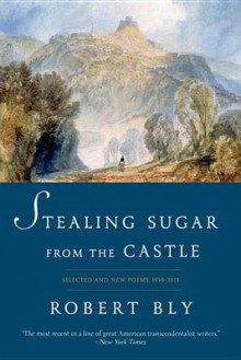 Stealing Sugar from the Castle av Robert Bly (Heftet)