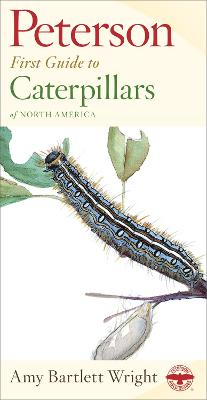 First Guide to Caterpillars av Roger Tory Peterson (Heftet)