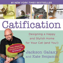 Catification av Jackson Galaxy og Kate Benjamin (Heftet)