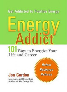 Energy Addict av Jon Gordon (Heftet)