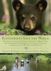 Ecotourists Save the World av Pamela Brodowsky (Heftet)