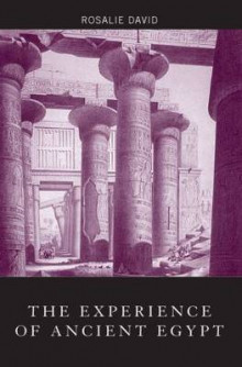 The Experience of Ancient Egypt av A. Rosalie David (Heftet)