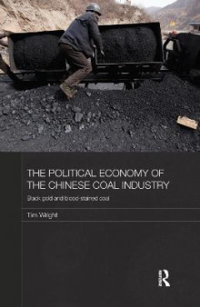 The Political Economy of the Chinese Coal Industry av Tim Wright (Heftet)