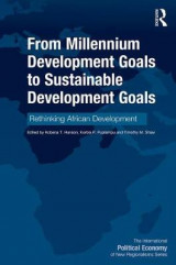 Omslag - From Millennium Development Goals to Sustainable Development Goals