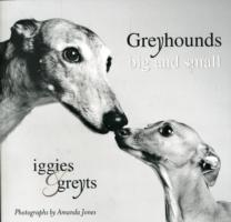 Greyhounds Big and Small av Amanda Jones (Heftet)