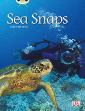 Bug Club Independent Non Fiction Year 1 Green A Sea Snaps av Diana Noonan (Heftet)