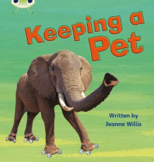 Keeping a Pet: Non-Fiction Set 13 av Jeanne Willis (Heftet)