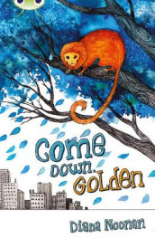 Bug Club Independent Fiction Year 3 Brown A Come Down, Golden av Diana Noonan (Heftet)