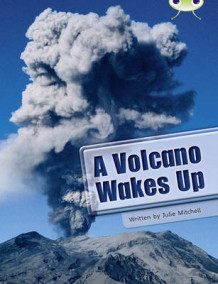 BC NF Lime A/3C A Volcano Wakes Up av Julie Mitchell (Heftet)