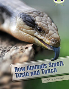 BC NF White A/2A How Animals Smell, Taste and Touch: White A / NC 5B av Jo Windsor (Heftet)