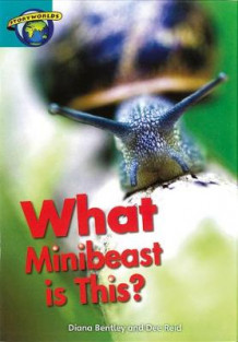 Fact World Stage 6: What Minibeast is This? (Heftet)