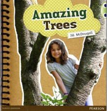 Bug Club Non-fiction Green A Amazing Trees av Jill McDougall (Heftet)