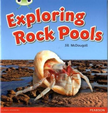 Bug Club Green C Exploring Rock Pools av Jill McDougall (Blandet mediaprodukt)
