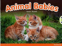 Bug Club Red B (KS1) Animal Babies av Sarah Russell (Blandet mediaprodukt)