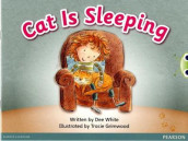 Bug Club Pink A Cat is Sleeping 6-pack av Dee White (Blandet mediaprodukt)