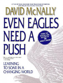 Even Eagles Need A Push av David McNally (Heftet)
