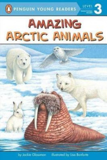 Amazing Arctic Animals av Jackie Glassman (Heftet)