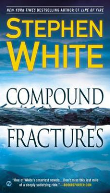 Compound Fractures av Professor of International Politics Stephen White (Heftet)