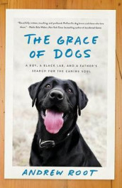 The Grace of Dogs av Andrew Root (Heftet)
