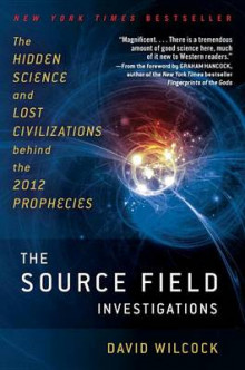 The Source Field Investigations av David Wilcock (Heftet)