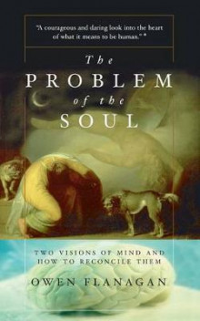 The Problem of the Soul av Owen J. Flanagan (Heftet)