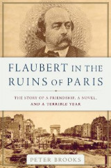 Omslag - Flaubert in the Ruins of Paris