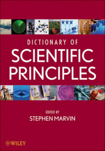 Dictionary of Scientific Principles (Innbundet)